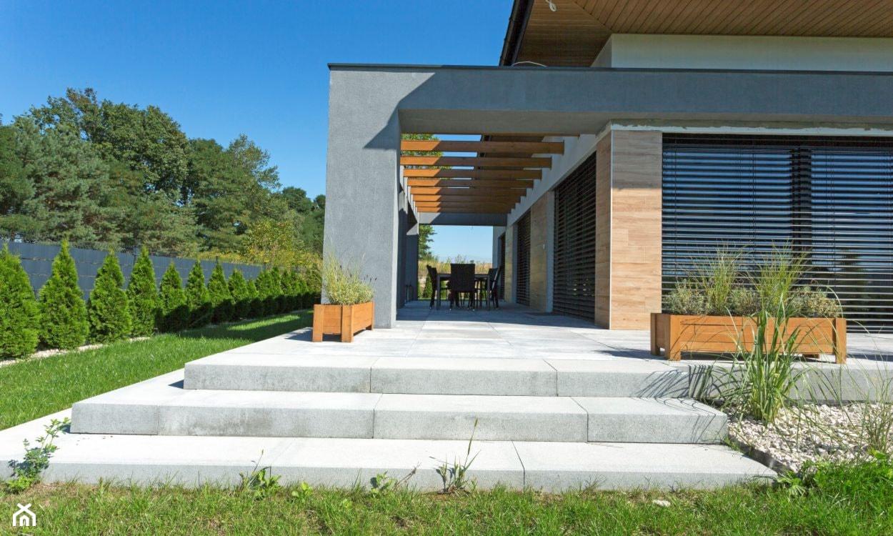 wejście na taras, stopnie schodowe betonowe