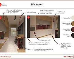 Kuchnia+z+czerwonymi+akcentami+-+zdj%C4%99cie+od+Alina+Badora+Pracownia+Architektury+Wn%C4%99trz