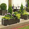 Przepis na doskonały ogród