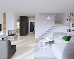 salon z kominkiem - zdjęcie od SARNA ARCHITEKCI / Architektura Wnętrza dla wymagających / Interior Design - Homebook