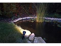 Reflektorek ogrodowy do podświetlania roślin