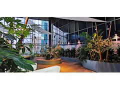 Mała architektura: donice – aranżacja miejsc użytku publicznego