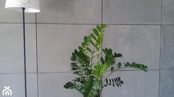 Zdjęcie tytułowe dla ideaposta płyty betonowe dekoracyjne