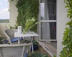 Ogród na balkonie - Mały taras z przodu domu z tyłu domu - zdjęcie od KarinaPe