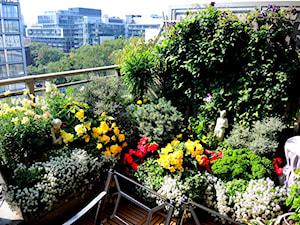 Jak urządzić ogród na balkonie w bloku?  Przegląd inspiracji