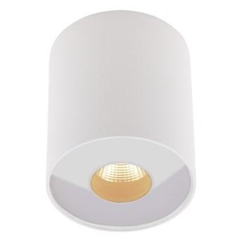 Plazma C0152 plafon biały IP54