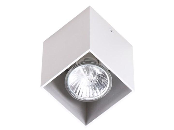Pet Square C0082 plafon biały Kwadratowe Oprawa stropowa Kategoria Oprawy oświetleniowe