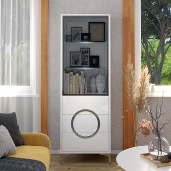 Biała nowoczesna witryna EVA  ze szklanymi drzwiami / wysoki połysk