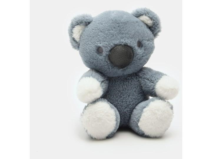 Sinsay - Przytulanka miś koala - Turkusowy Misie Kategoria Maskotki i pluszaki