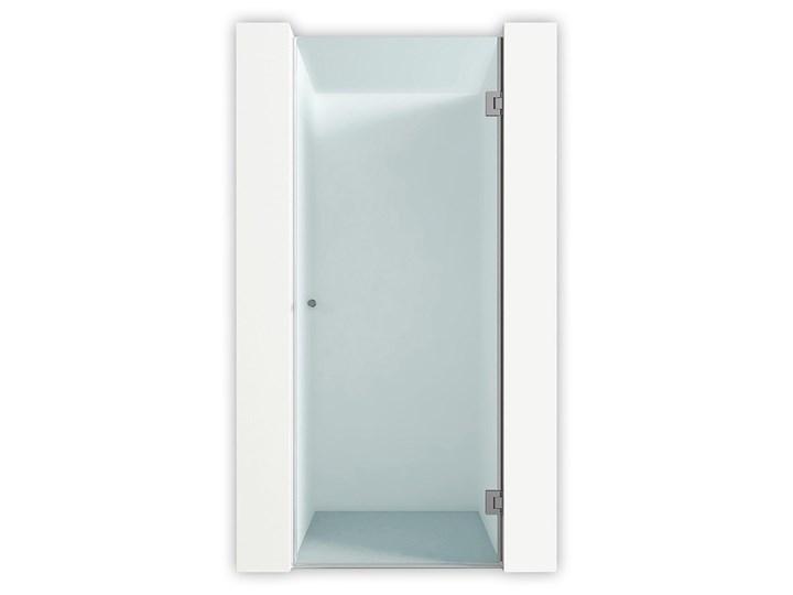 Drzwi prysznicowe Vega Kolor Przezroczysty