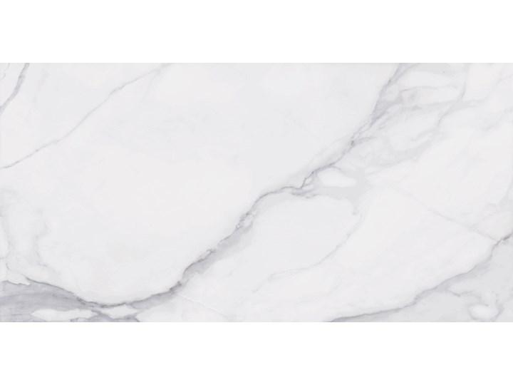 Pontremoli Mate 60x120 płytki imitujące marmur 60x120 cm Płytki ścienne Prostokąt Powierzchnia Matowa Gres Płytki podłogowe Kolor Biały