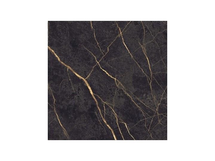 Ariana Epoque Black 60x60 Płytka gresowa matowa Płytki tarasowe Kwadrat Płytki podłogowe 60x60 cm Płytki ścienne Kolor Czarny