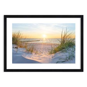 Obraz w ramie - Morza szum, ptaków śpiew, dzika plaża pośród traw…