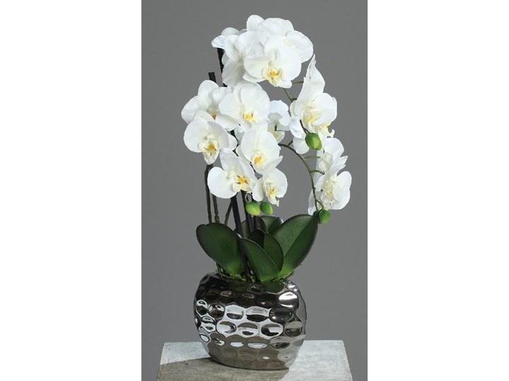 Storczyk w Srebrnej Donicy 50 cm - Naturalny w Dotyku Bukiety Kategoria Sztuczne kwiaty