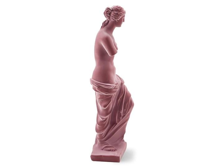Różowy posąg statua Wenus Tworzywo sztuczne Metal Kategoria Figury i rzeźby