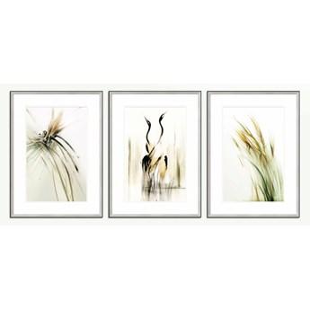 SERIA ULOTNA 2 - Tryptyk żurawie, ważka, trawy w dużym formacie. Hit Galerii w Chmurach.