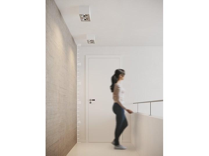 Paulo 2 12V Kategoria Oprawy oświetleniowe Prostokątne Oprawa stropowa Oprawa led Kolor Biały