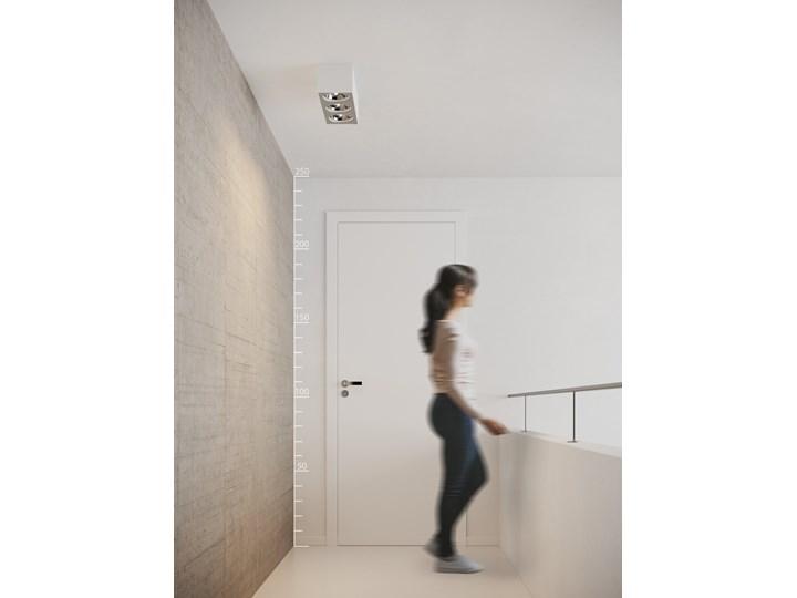 Paulo 3 230V Oprawa stropowa Oprawa led Prostokątne Kategoria Oprawy oświetleniowe