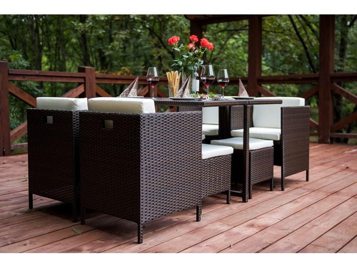 Technorattanowe meble stołowe CRISTALLO Zawartość zestawu Fotele Zestawy obiadowe Stoły z krzesłami Styl Nowoczesny