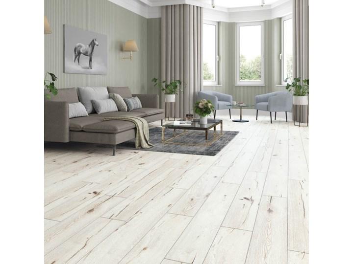 Panele podłogowe wodoodporne Classen Dąb Asal AC5 1,973 m2 Grubość 8 mm Kolor Biały