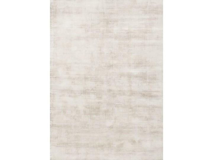 Dywan TERE SILVER do salonu 160x230 200x300 160x230 cm Wełna Kategoria Dywany Prostokątny Dywany 200x300 cm Wiskoza Kolor Beżowy