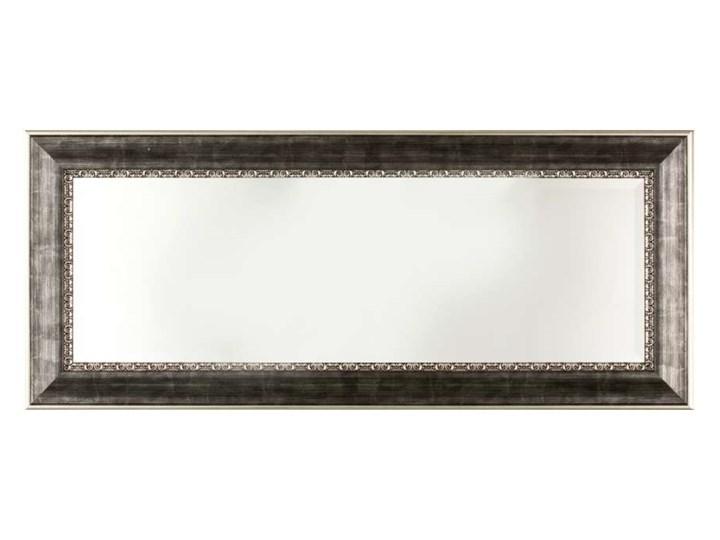 Lustro Milan 44x105cm, 44 × 105 cm Kategoria Lustra Prostokątne Lustro z ramą Ścienne Pomieszczenie Sypialnia
