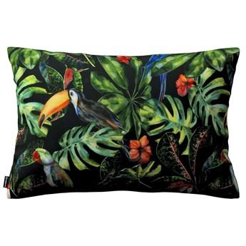 Poszewka Kinga na poduszkę prostokątną, papugi i tukany na czarnym tle, 60 × 40 cm, Velvet