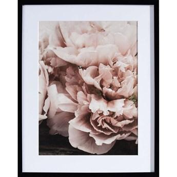 Obraz Peony Sunset I 40x50cm, 40×50cm