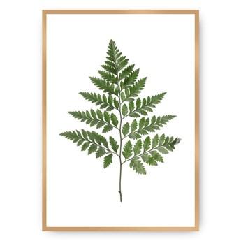 Plakat Fern Green, 40 x 50 cm, Ramka: Złota