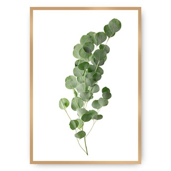 Plakat Eucalyptus Green, 21 x 30 cm, Ramka: Złota