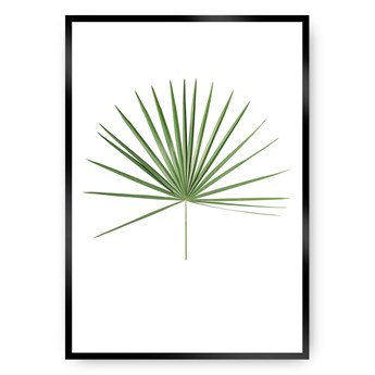 Plakat Tropical Leaf Green, 21 x 30 cm, Ramka: Czarna