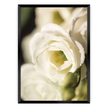 Plakat Flower Wall, 70 x 100 cm, Ramka: Czarna