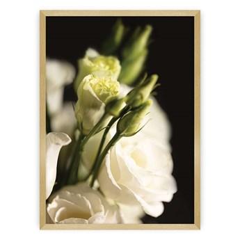 Plakat Dark Flowers I, 50 x 70 cm, Ramka: Złota