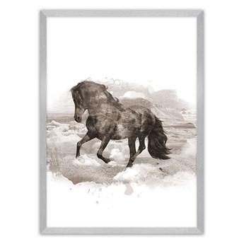 Plakat Horse, 40 x 50 cm, Ramka: Srebrna
