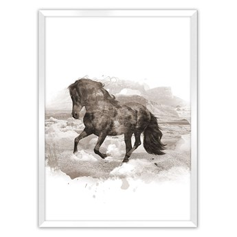 Plakat Horse, 40 x 50 cm, Ramka: Biała