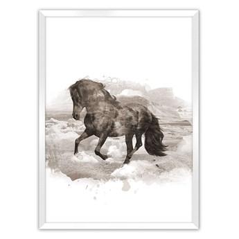Plakat Horse, 50 x 70 cm, Ramka: Biała
