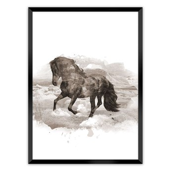 Plakat Horse, 70 x 100 cm, Ramka: Czarna