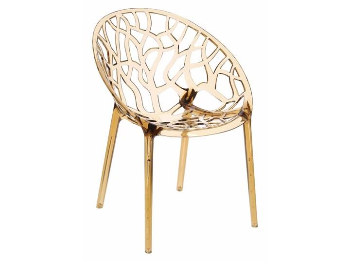 Krzesło Coral bursztynowe Głębokość 60 cm Szerokość 59 cm Wysokość 80 cm Pomieszczenie Salon