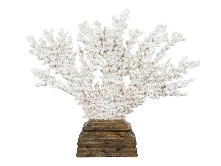 KORALOWIEC BIAŁY NA POSTUMENCIE DONNA SLIM 23x19x26CM Drewno Tworzywo sztuczne Kategoria Figury i rzeźby