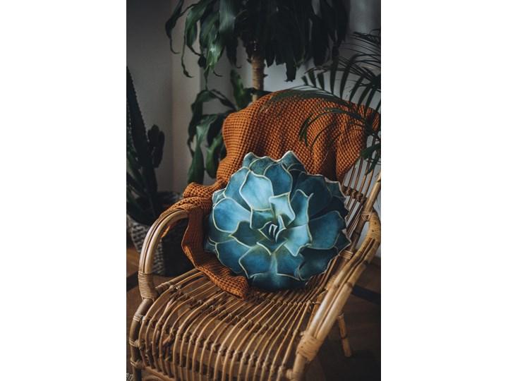 Poduszka Suculent  Aloes Nieregularne Pomieszczenie Salon Poduszka dekoracyjna Pomieszczenie Sypialnia