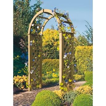 Delta Gartenholz Pergola ogrodowa 119 cm x 58 cm wys.: 240 cm