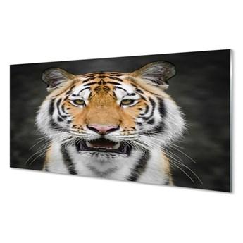 Obrazy akrylowe Tygrys