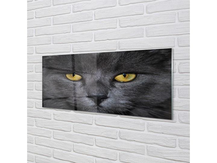 Obrazy akrylowe Czarny kot Pomieszczenie Salon Wymiary 70x140 cm