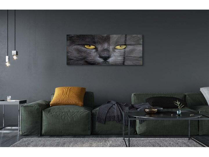 Obrazy akrylowe Czarny kot Pomieszczenie Salon Wymiary 50x125 cm
