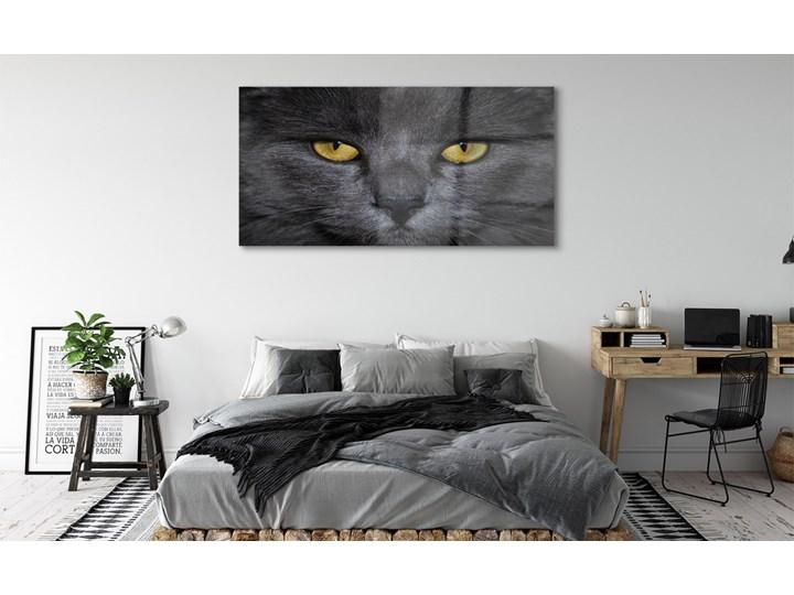 Obrazy akrylowe Czarny kot Wymiary 70x140 cm Wymiary 50x100 cm