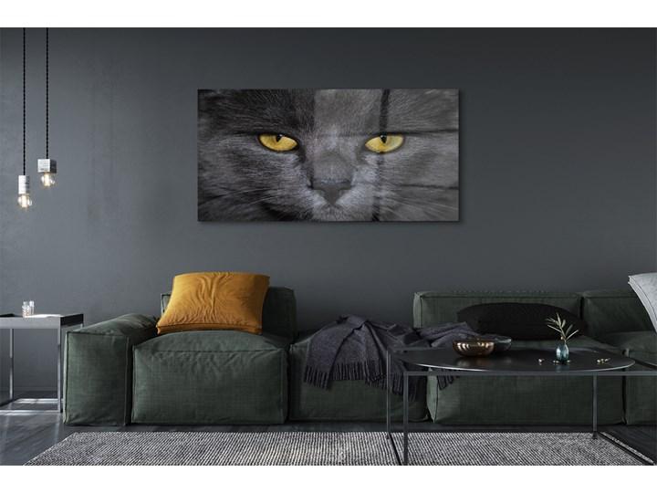 Obrazy akrylowe Czarny kot Wymiary 70x140 cm