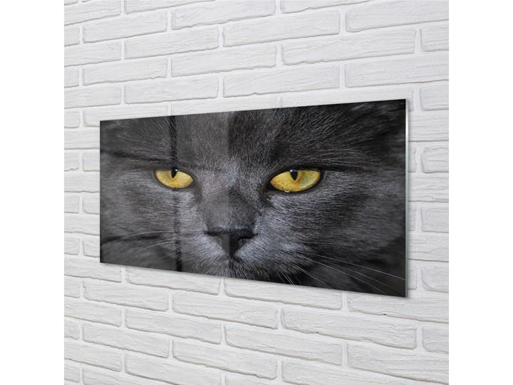 Obrazy akrylowe Czarny kot Wymiary 50x125 cm