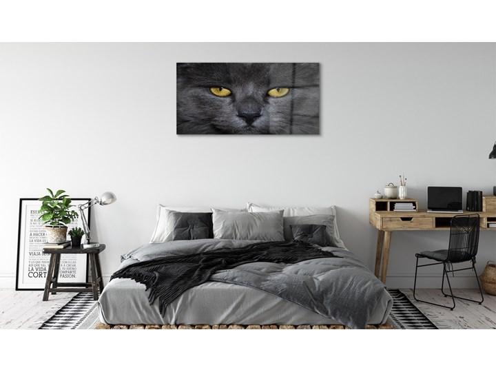 Obrazy akrylowe Czarny kot Wymiary 50x100 cm Wymiary 70x140 cm