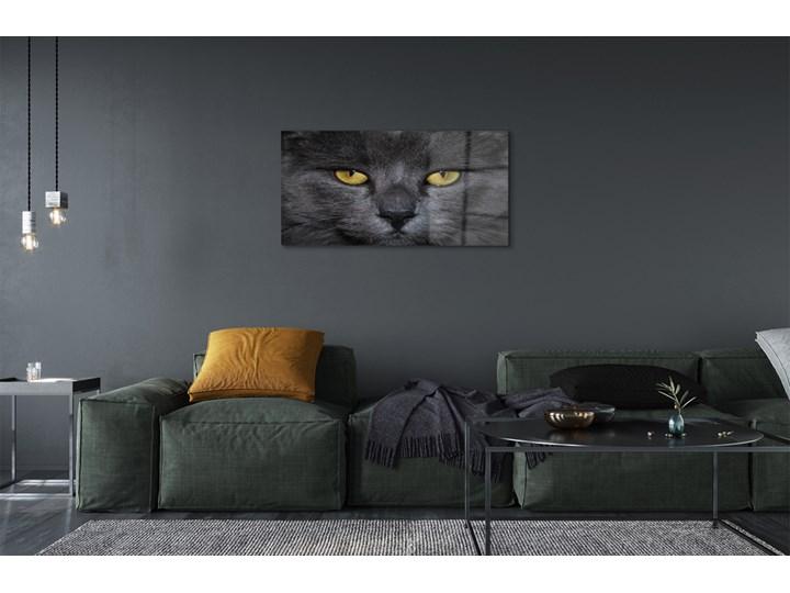 Obrazy akrylowe Czarny kot Wymiary 50x100 cm