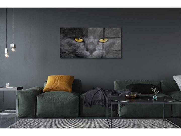 Obrazy akrylowe Czarny kot Wymiary 60x120 cm Wymiary 50x125 cm